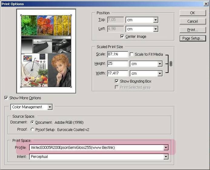 Программа Настройки Профиля Принтера